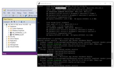 Tabbles database on Linux